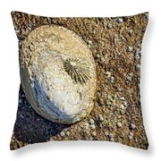 Sea Shell By The Seashore Throw Pillow
