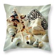 Sea Shells- Colorful Collection Throw Pillow