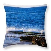 Sea Shelves Throw Pillow