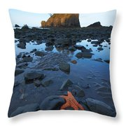 Sea Stacks And Star Fish Throw Pillow