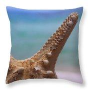 Sea Star And Ocean Throw Pillow