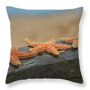 Sea Star Trio Throw Pillow