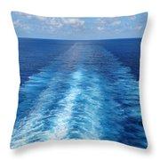 Sea Trails Throw Pillow