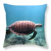 Sea Turtle 5 Throw Pillow