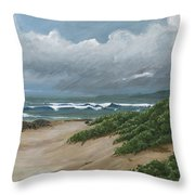 Sea Turtle Companions Throw Pillow