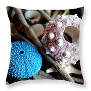 Sea Urchin Duo Throw Pillow