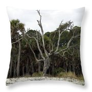 Sea Washed Oat Tree Throw Pillow