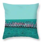 Seabird Lineup Throw Pillow