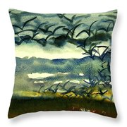 Seabirds Rising From The Marsh 2-27-15  Throw Pillow