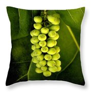 Seagrape Cluster Throw Pillow