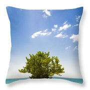 Seagrape Tree Throw Pillow