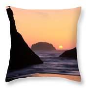 Seagull And Sunset Throw Pillow
