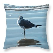 Seagull At Attention Throw Pillow