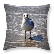 Seagull At Low Tide Throw Pillow