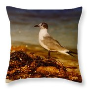 Seagull At The Keys Throw Pillow