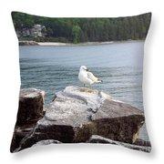 Seagull Awaits Throw Pillow
