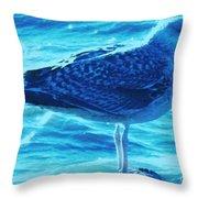 Seagull Basking In The Sun Throw Pillow