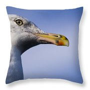 Seagull - Cape Neddick - Maine Throw Pillow