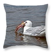Seagull Eating Huge Fish In Water Art Prints Throw Pillow