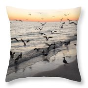 Seagulls Feasting Throw Pillow