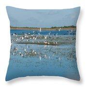 Seagull Flock Throw Pillow