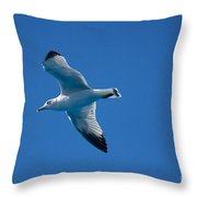 Seagull In The Blue Sky Throw Pillow