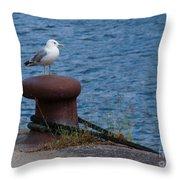 Seagull On A Bollard  Throw Pillow