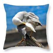 Seagull On A Rock Throw Pillow
