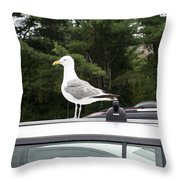 Seagull On Car Throw Pillow