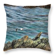 Seagull Over Rocks Throw Pillow
