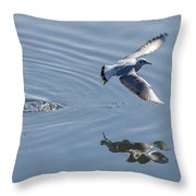 Seagull Reflection Throw Pillow