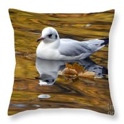 Seagull Resting Among Fall Leaves Throw Pillow