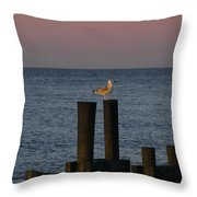 Seagull Seascape Throw Pillow