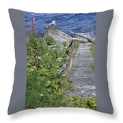 Seagull Steps Guard Island Alaska Throw Pillow