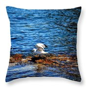 Seagull Wings Lifted Throw Pillow