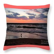 Seagull With Sunset Throw Pillow