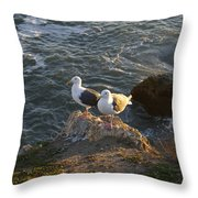 Seagulls Aka Pismo Poopers Throw Pillow