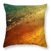 Seagulls At Sunset Throw Pillow