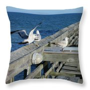 Seagulls Throw Pillow by Nelson Watkins
