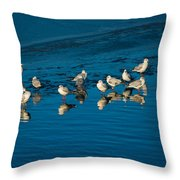 Seagulls On Frozen Lake Throw Pillow
