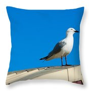Seagulls On Roof Top Throw Pillow