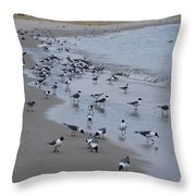 Seagulls On The Delaware Bay Throw Pillow by Bill Cannon