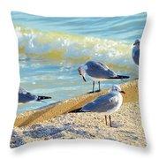 Seagulls On Wall Throw Pillow