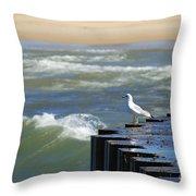 Seagull's Perch Throw Pillow