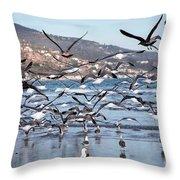 Seagulls Seagulls And More Seagulls Throw Pillow