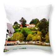 Seagulls View Throw Pillow