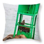 Seal Hammock Throw Pillow