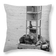 Seal Nap Time Black And White Throw Pillow