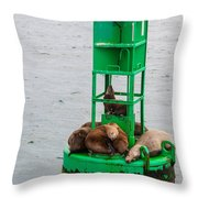 Seal Nap Time Throw Pillow