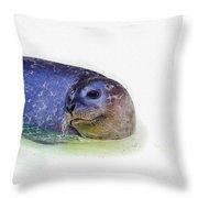 Seal On White Throw Pillow